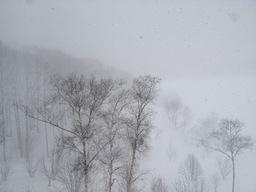 きょうも雪.JPG
