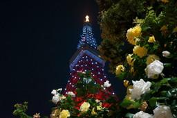 バラとタワー