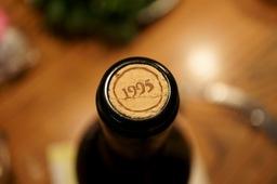 瓶口1995