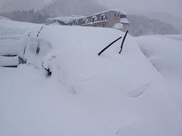 雪くるま.jpg