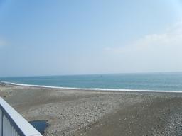 興津川河口