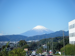 秦野からの富士山