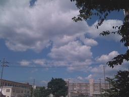 KyotoHare.JPG
