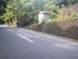 Makiuma20090822.JPG