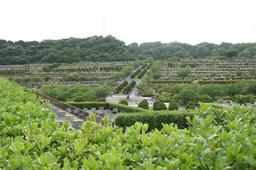 2008年5月の鎌倉霊園
